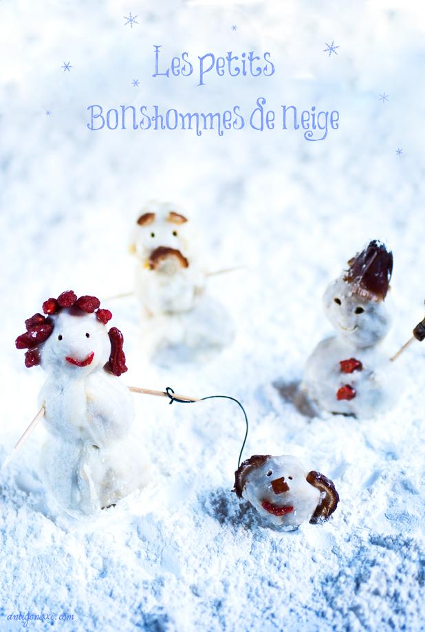 30 recettes VG de Noël - Antigone XXI