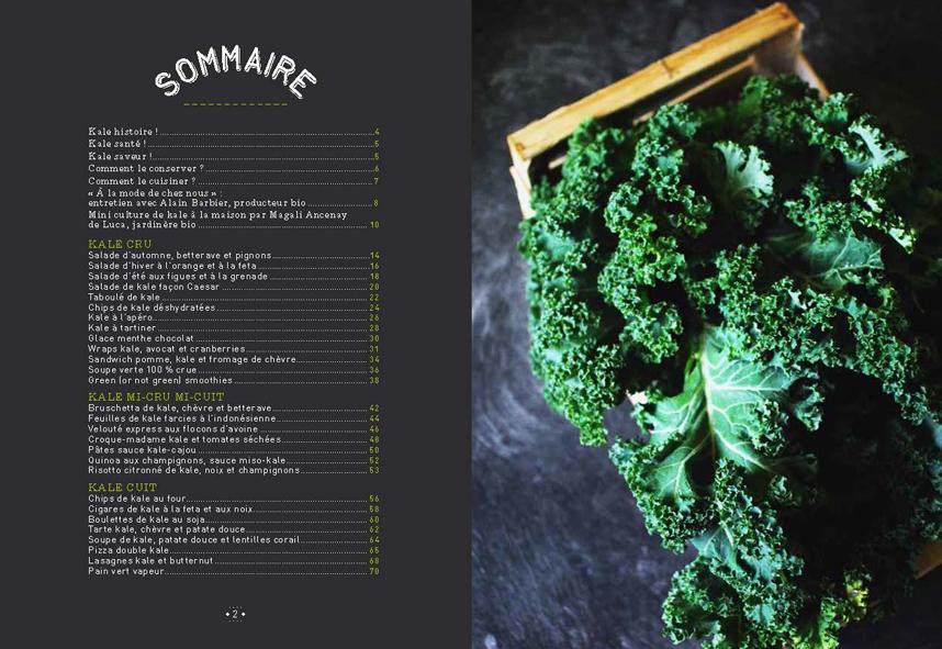 Kale, un super aliment dans votre assiette [livre]   Antigone XXI
